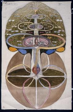 the transcendent function as a dialogue between positions in the conscious and unconscious is required for the development of all of the functions