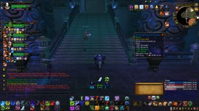 Loot-Whore-Healer (1)