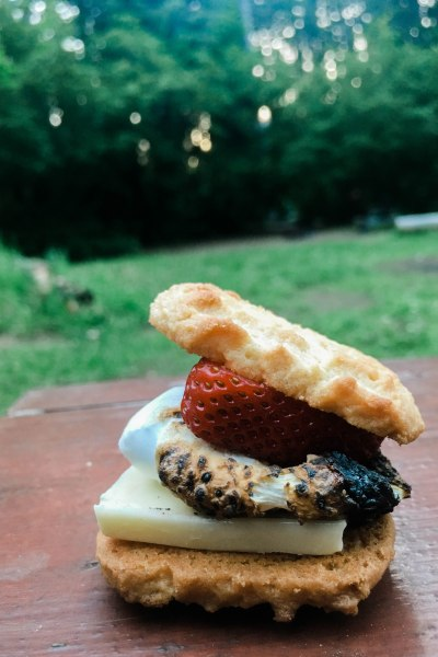 strawberry shortcake s'mores