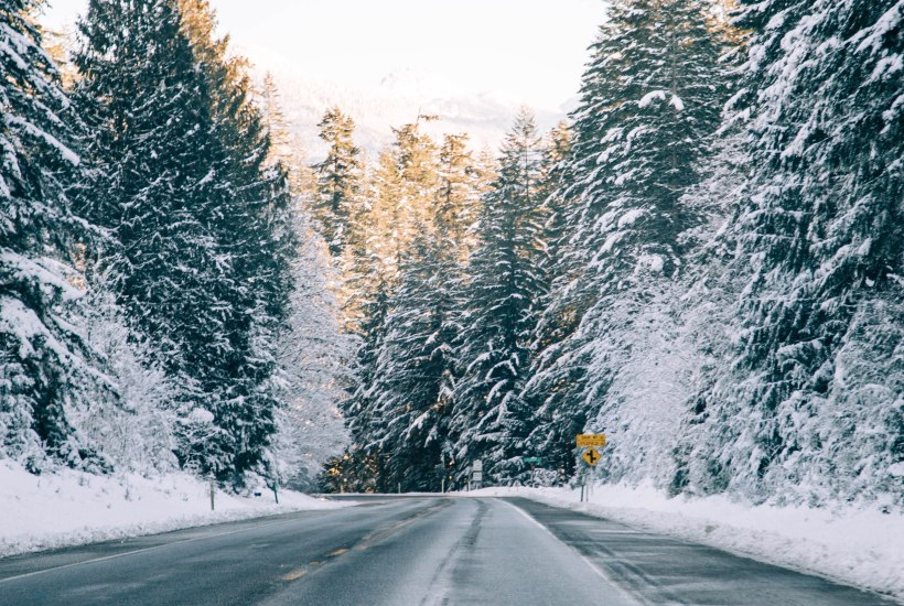 Winter road with trees and snow