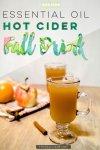 essential oil cider recipe, essential oils for beginners, essential oil recipes, diy essential oils, young living essential oils