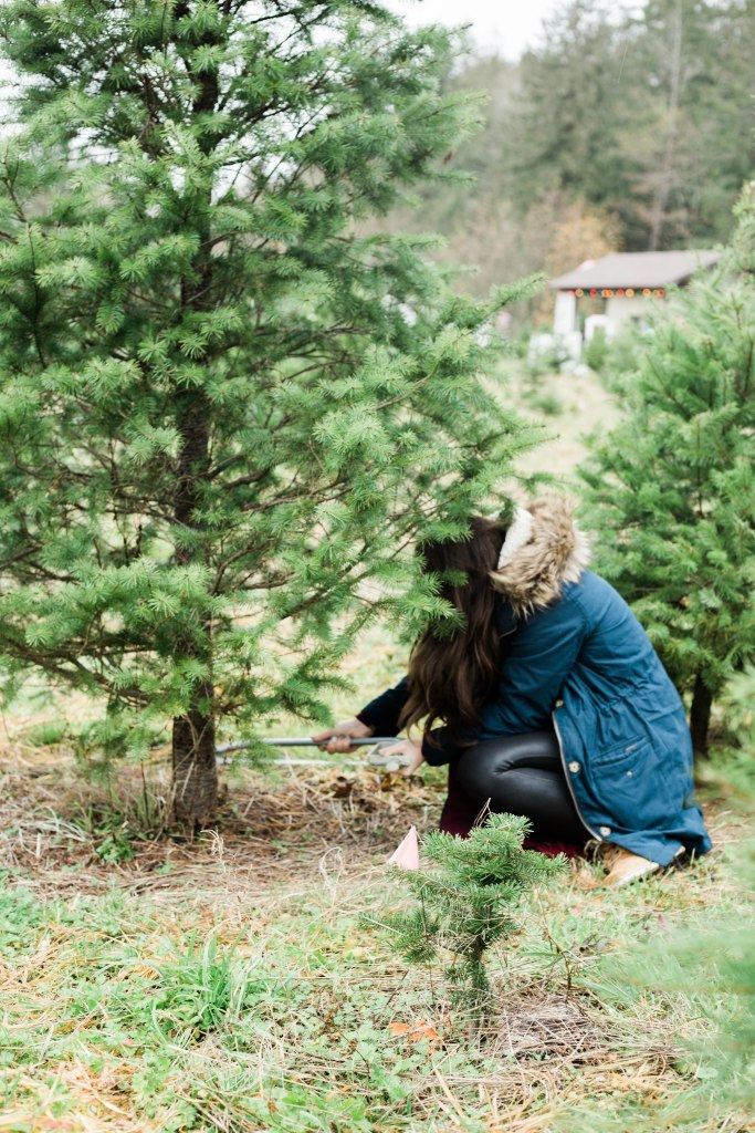 what to expect from a u cut Christmas tree farm, Christmas outfit