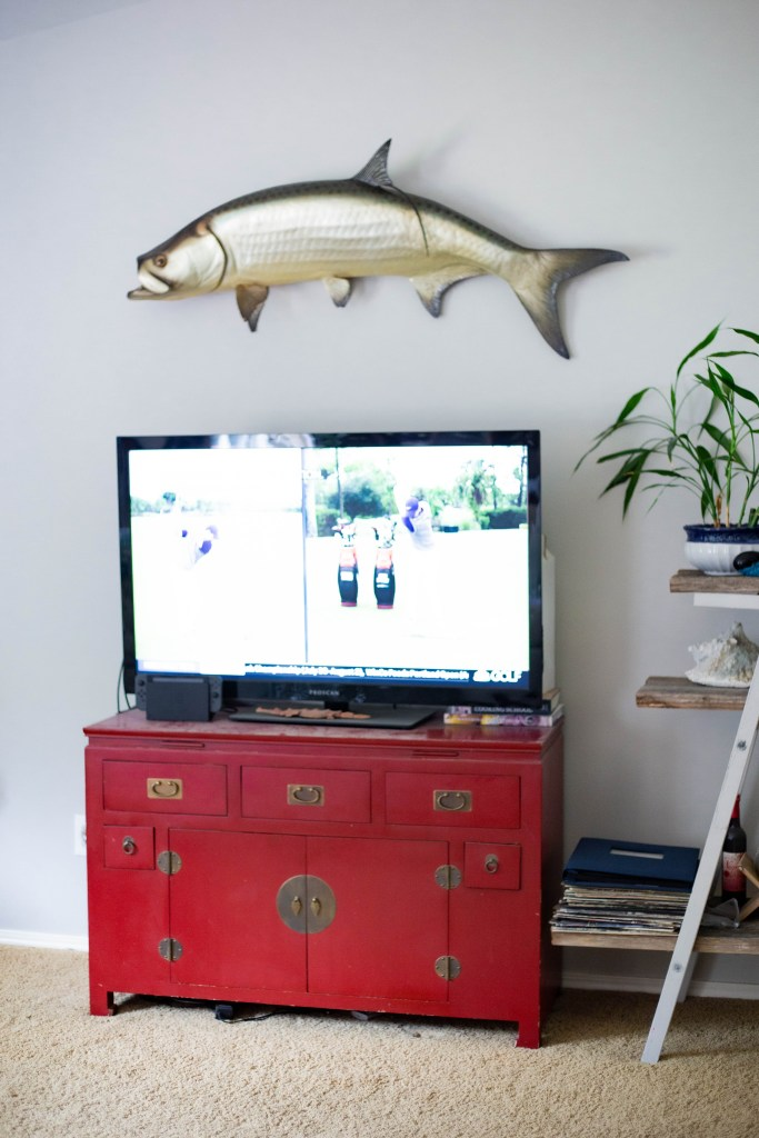 tarpon fish mounted on wall in living room