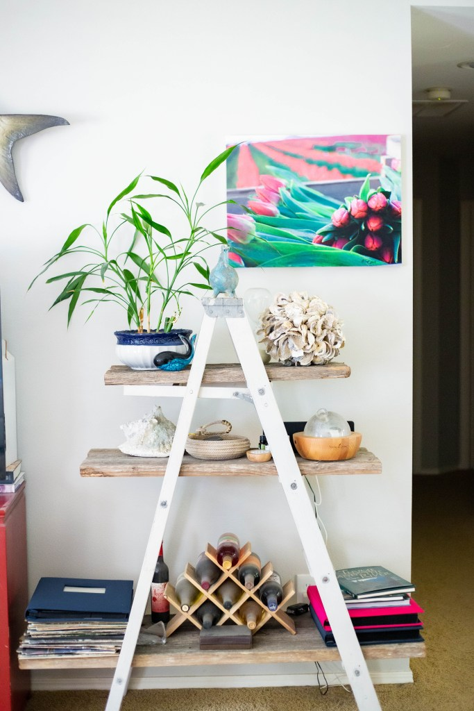 ladder bookshelf in coastal design living room with Lucy bamboo