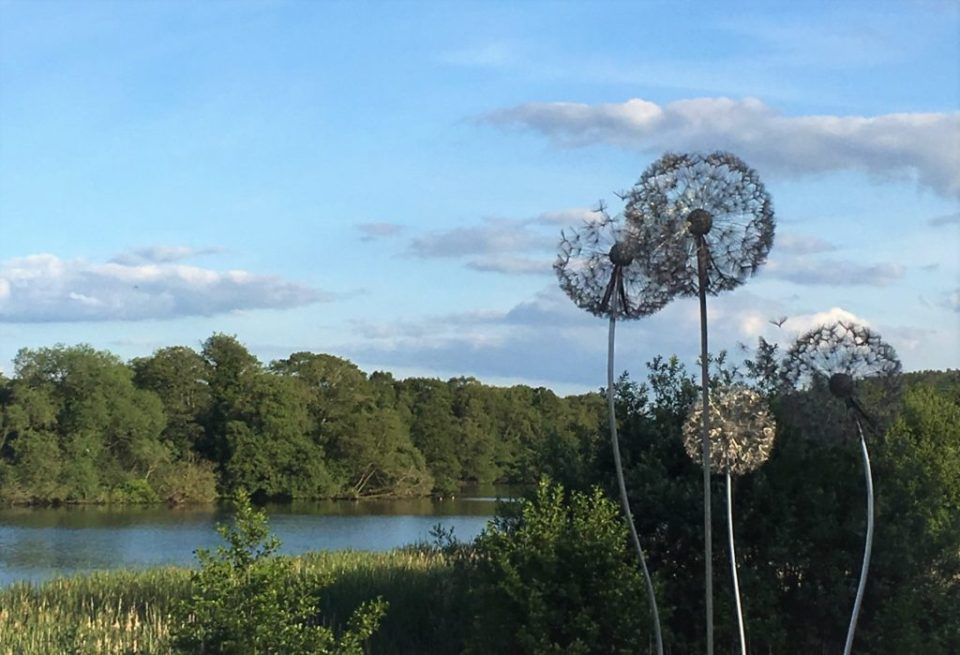 Dandelion wire sculptures at Trentham Gardens