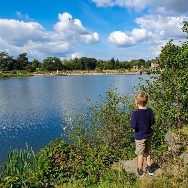 Boy next to the lake at Trentham Gardens