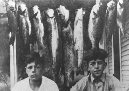 Séchoir à poisson
