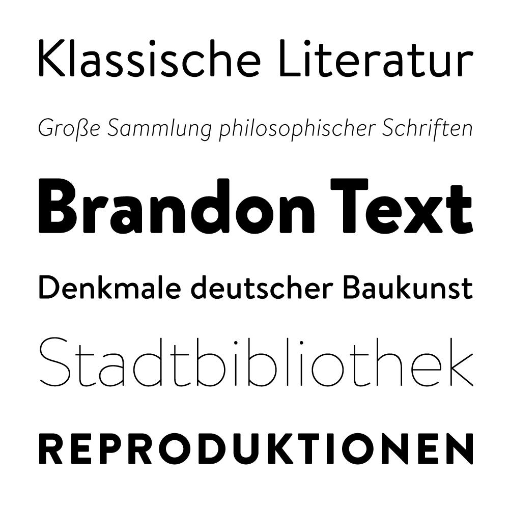 Brandon Text