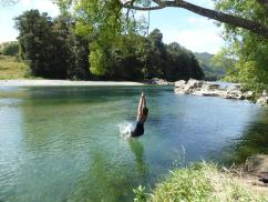 Riverside campsite rope swing (2)