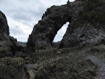 0290. Mangawhai Heads coast walk (Copy)