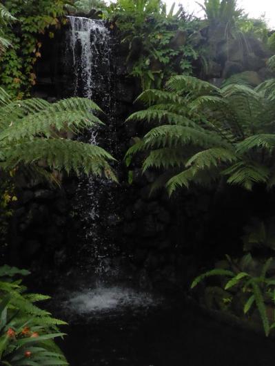 003. Botanical gardnes in Melbourne