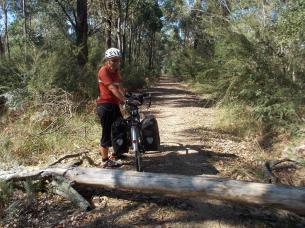 080. Blocked rail trail