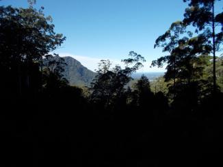 099. Waterfall Way on the way to Dorrigo