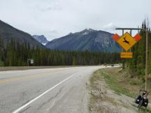 186. Approach to Marble Canyon