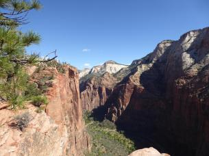 078-looking-up-zion-canyon