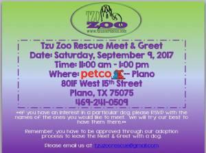 Meet & Greet, Petco Plano