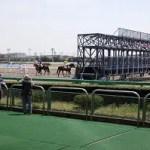 2019 園田 摂津盃 仕分け予想 不良馬場想定…◎ミッレミリアで遊ぶ