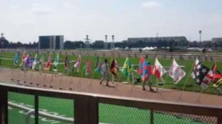 2019 東京 NHKマイルカップ グランアレグリア・グルーヴィット・カテドラルから。