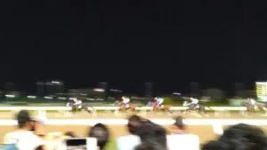 【レース回顧】2020 ジャパンダートダービー カフェファラオに「魔界」の洗礼、惜しかったブラヴール。