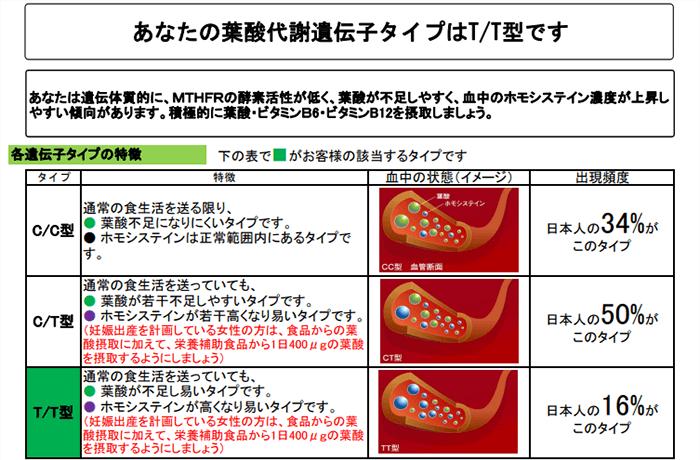 あなたの葉酸代謝遺伝子タイプ結果表