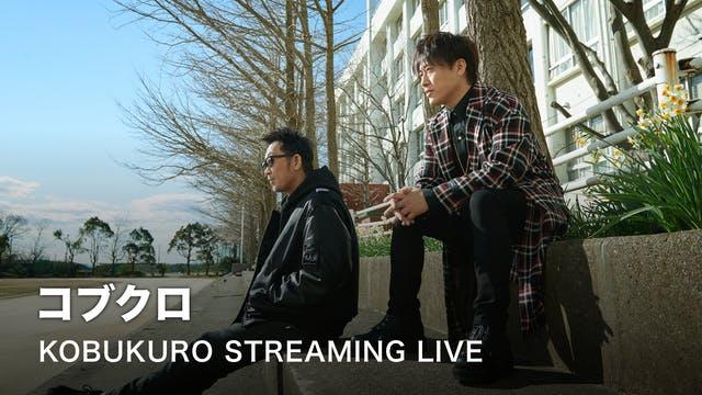 動画配信ライブコンサート コブクロ2020