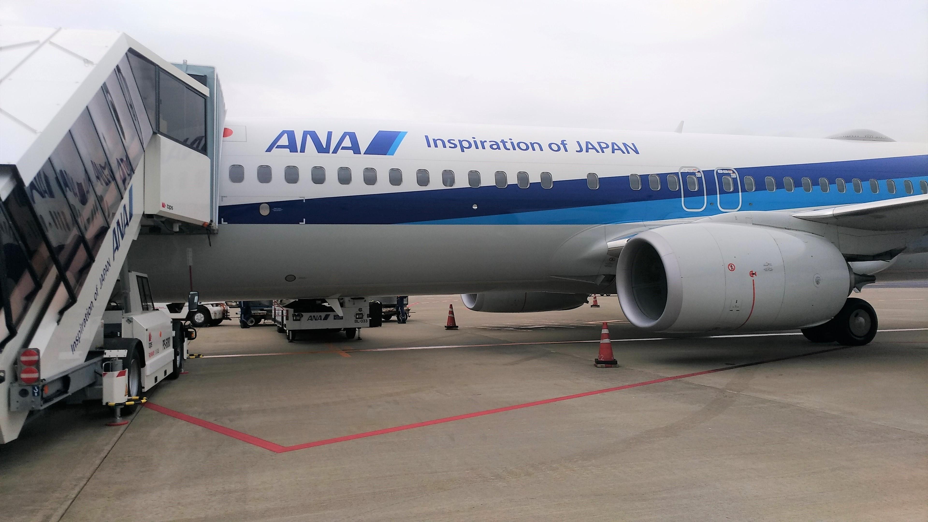 ANA B737-800