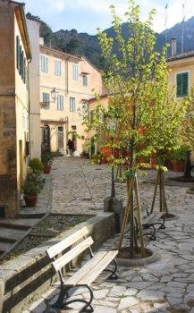 Ile d'Elbe en famille et fourgon aménagé : la douceur de vivre Toscane (Italie) 17