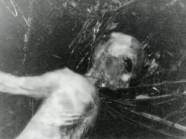 Aunque la mayoría de los alienígenas murió en el incidente, al menos uno habría logrado sobrevivir y ser capturado por los militares. Estos seres fueron conocidos bajo el nombre de EBEs (Entidades Biológicas Extraterrestres).  Artículo publicado en Myster
