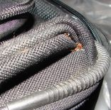 bed bugs and eggs in suitcase crevices