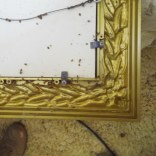 bed bugs behind picture frame