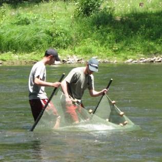 Kick seining at Little Beaver Creek