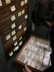 Zach Griebenow moving a drawer as part of reorganization of the beetle collection