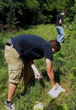 Zach Hurley adding water to each pan trap; Matt Elder harvesting the catch.