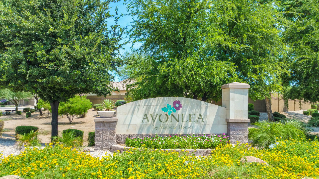 Avonlea Community in Gilbert AZ  Avonlea Area Homes