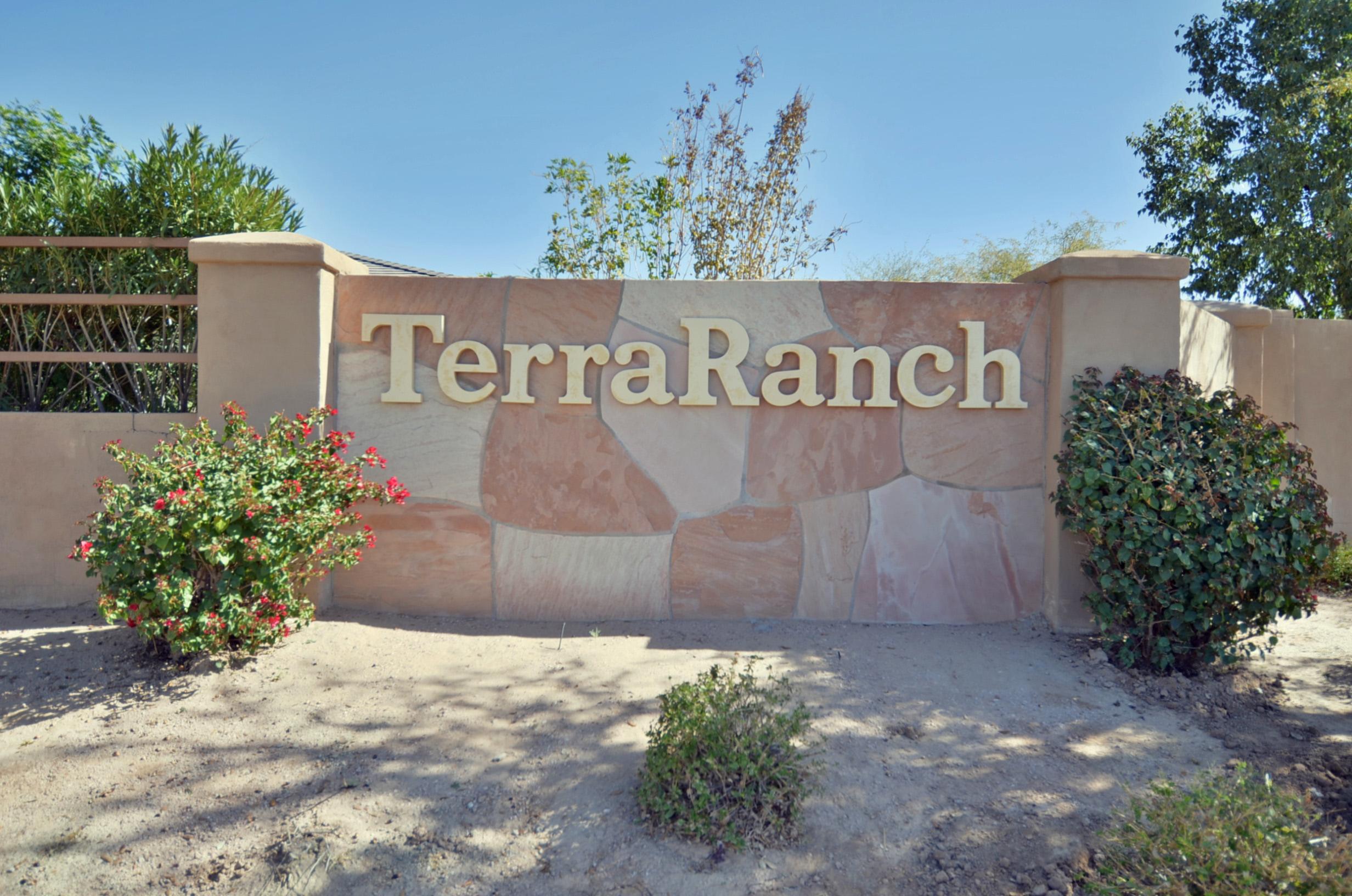 Homes for sale in Terra Ranch in Queen Creek AZ
