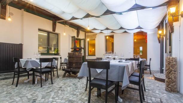 IL Tinello Cucina e Cantina a Padova  Menu prezzi immagini recensioni e indirizzo del ristorante