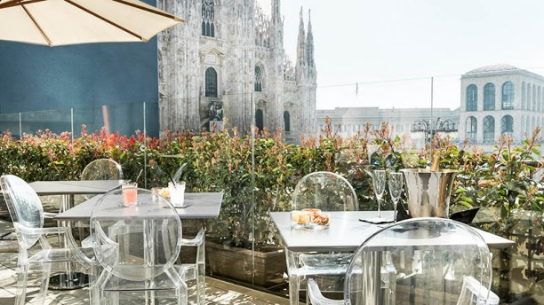 Duomo 21 Terrace in Milan  Restaurant Reviews Menu and