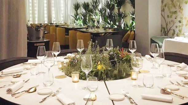 Terrazza Calabritto Milano in Milan  Restaurant Reviews Menu and Prices  TheFork