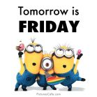thusrday minion
