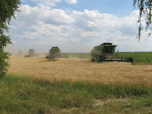 Інвестиції в сільське господарство
