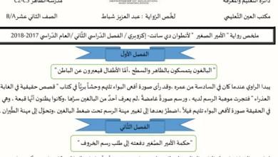 Photo of تحليل رواية الأمير الصغير للصف الثاني عشر الفصل الثاني 2017-2018