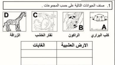 Photo of اوراق عمل علوم صف اول الفصل الثاني