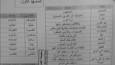 Photo of الراعي  الأمين تطبيقات عربي للصف السابع الفصل الثاني