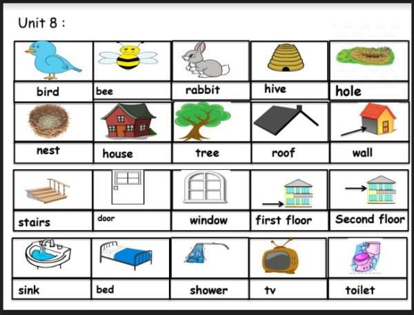 مفردات الوحدة الثامنة لغة انكليزية صف ثالث فصل ثالث