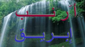 كلمات عربية بالأحرف الهجائية للصف الأول