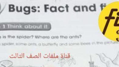 Photo of حل الوحدة السادسة كتاب النشاط لغة إنجليزية صف ثالث فصل ثاني