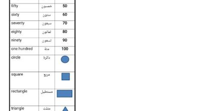 Photo of صف ثالث فصل ثاني مفردات الدرس الأول والثاني من الوحدة الخامسة لغة إنجليزية