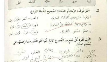Photo of صف رابع فصل ثاني حلول الوحدة  في كتاب النشاط لغة عربية