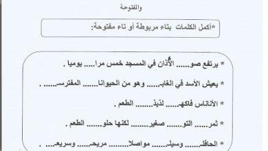 Photo of اوراق عمل التاء المربوطة والتاء المفتوحة لغة عربية صف ثاني فصل ثاني