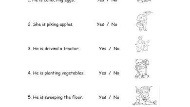Photo of صف ثاني فصل ثاني ورق عمل لغة إنجليزية